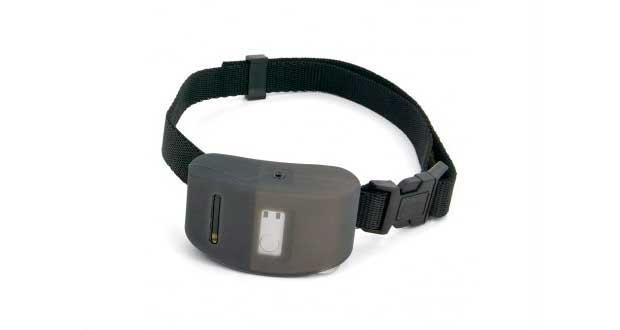 PetSafe Deluxe Anti-Bark Spray Collar
